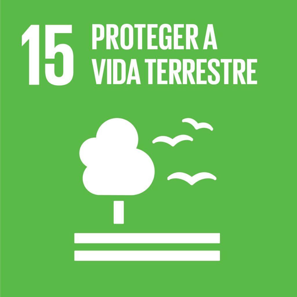 Objetivo 15: Proteger a Vida Terrestre