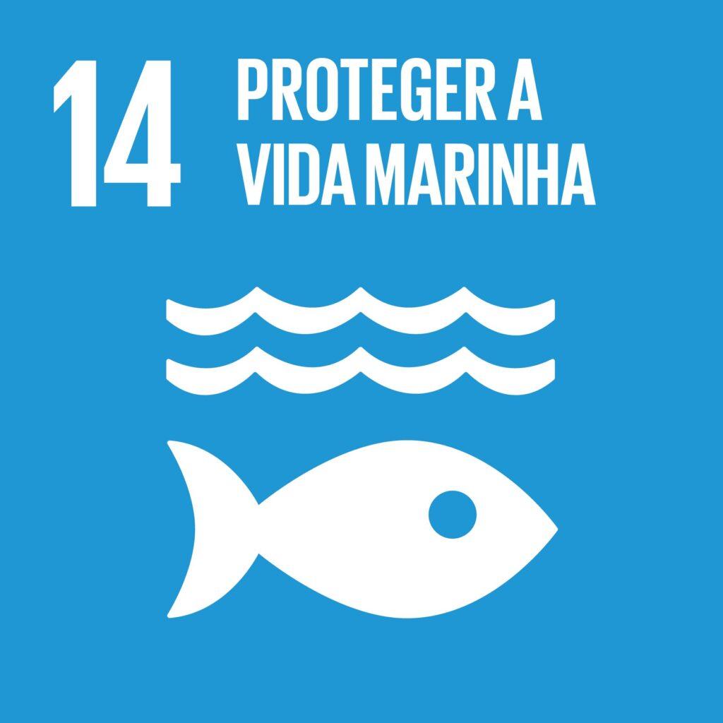 Objetivo 14: Proteger a Vida Marinha