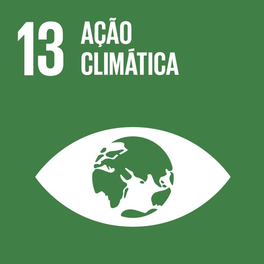 Objetivo 13: Ação Climática