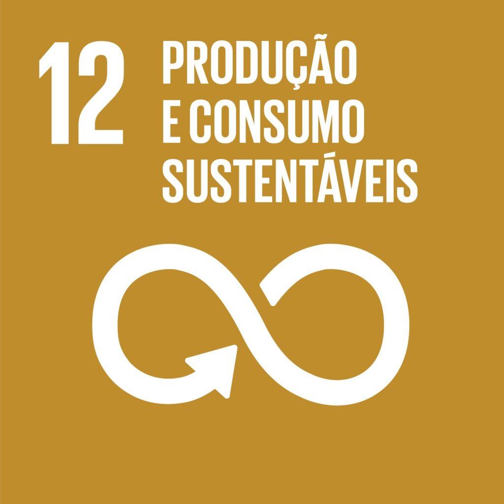 Objetivo 12: Padrões de Consumo e Produção Responsáveis